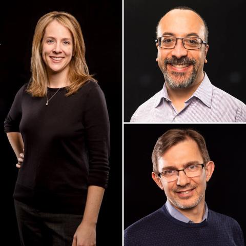 Photo collage of Drs. Karen Nolan, Anthony Lequerica, Didier Allexandre